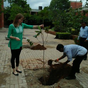 """Planting"" trees"